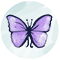 Butterfly Jewelry Icon - 7 Charming Sisters