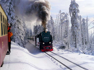 MistAway Winterization Train
