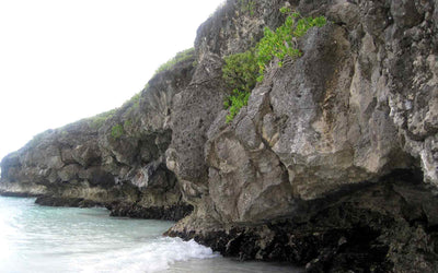 THE NATURAL BEAUTY OF ISLA DE VIEQUES