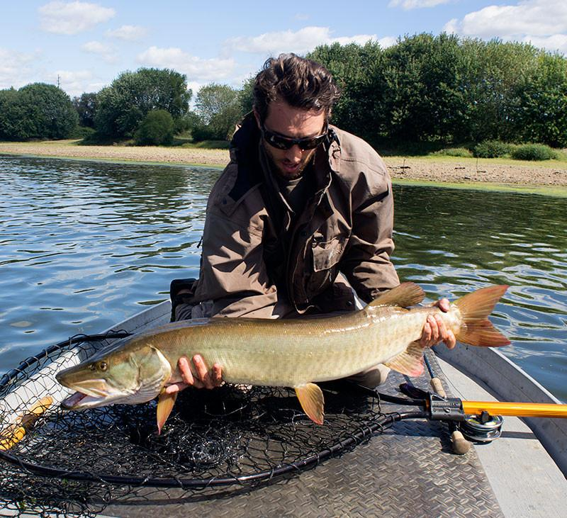 Joe Goodspeed. A wild Muskie landed on the Solar 11wt.