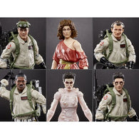 Ghostbusters (Plasma Series) Wave 1 - Set of 6 Figures (Terror Dog BAF)