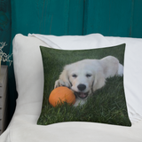 FTLA Apparel ~ For The Love of Animals Apparel:  Pillows - 18 X 18 Custom Pet Square Pillow