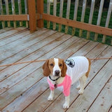 FTLA Apparel Beagle Freedom Project Cotton 3/4 Sleeve Doggy Baseball Raglan shirt - BFP FTLA Apparel-Doggy Clothes-FTLA Apparel-XS-White with Neon Pink Sleeves-For The Love of Animals Apparel