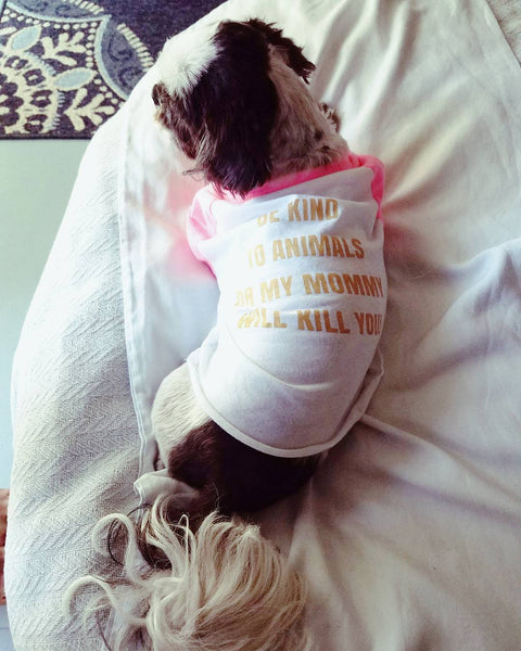 FTLA Apparel New Special Edition Swarovski Gold 3/4 Sleeve Dog Raglan Tee - Be Kind To Animals OR My Mommy Will Kill You!-Doggy Clothes-FTLA Apparel-XS-Pink Sleeves-For The Love of Animals Apparel