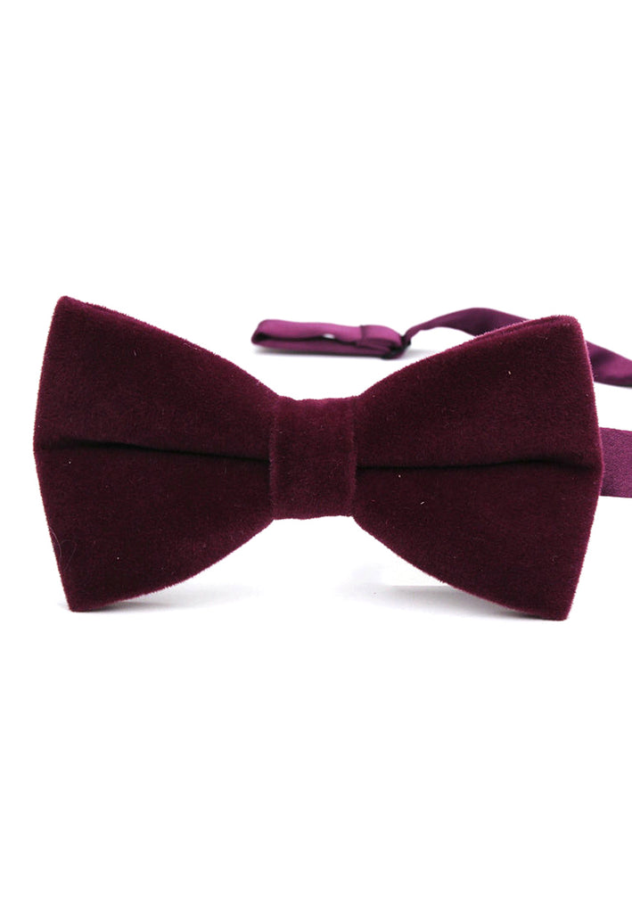 Suede Series Plum Purple Velvet Bow Tie
