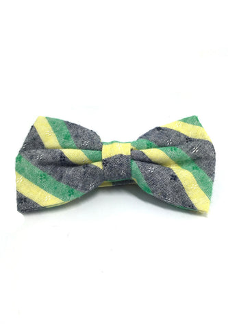 Probe Series Green, Blue and Yellow Striped Pattern Design Cotton Pre-tied Bow Tie