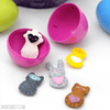 Mini Pocket Critters