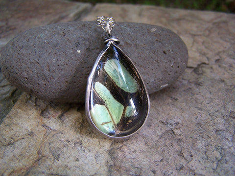Genuine Butterfly Wing and Sterling Silver Necklace