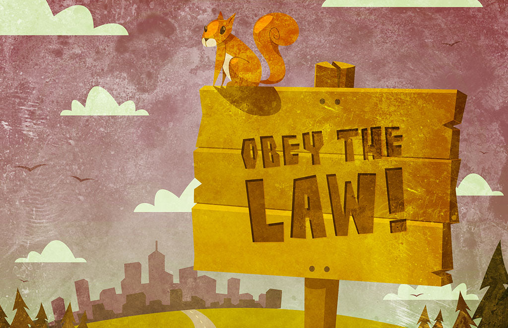 Top 10 Strangest Laws That Exist