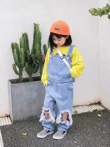 Destroyed Denim overall jumpsuit