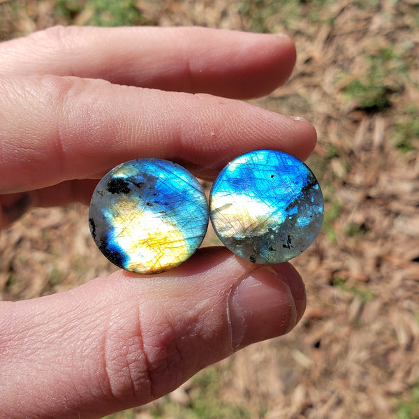 "Blue & Gold Labradorite Plugs - 19mm (3/4"")"