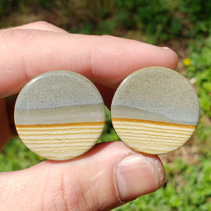 "Two-Tone Landscape Jasper Plugs - 26mm (1"")"