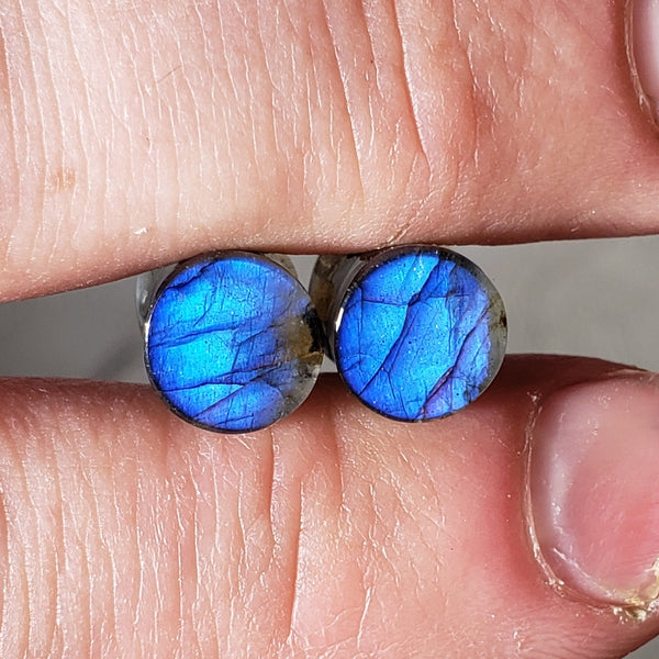 Deep Blue Labradorite Plugs - 8mm (0ga)