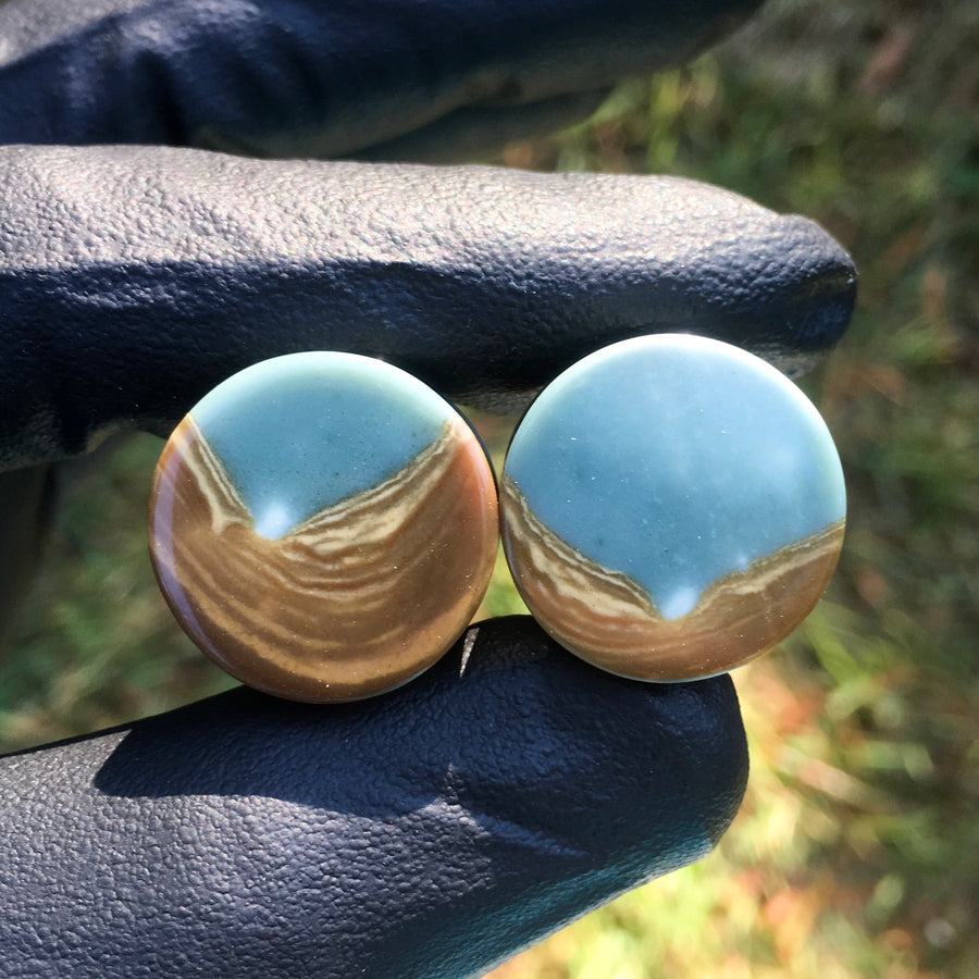 "19mm ""Valley"" Polychrome/Landscape Jasper Plugs"