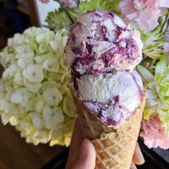 Black Currant & Cream Cheese (Pint)