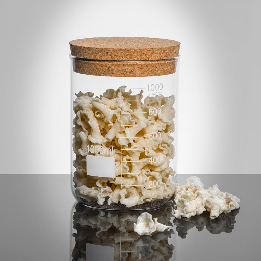 LAB Glass Beaker 1000ml Storage Jar with Cork Lid filled with pasta | Quirky Glass Storage Jars | Collett and Holder Gifted Living