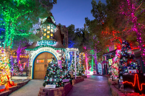 for more information please call 702 259 3741 the magical forest