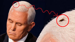 Mike Pence Fly