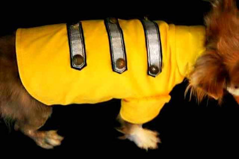 Mustard Dog Military Style Coat