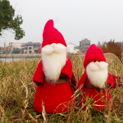 Handmade Needle felted felting project cute Christmas Santa gnome garden felted wool doll