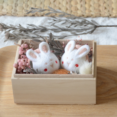 Handmade needle felted felting cute animal project bunny rabbit gift box