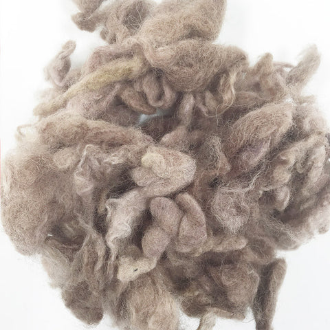 Needle felting supplies 10g Light coffee wool Curly Wool Curly Fiber for Wool Felt for Poodle Bichon and Sheep