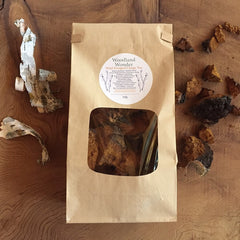 Woodland Wonder- Wild Harvested Chaga Tea