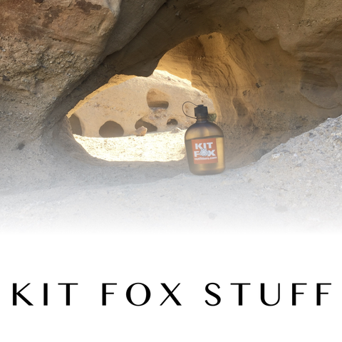 Kit Fox Stuff