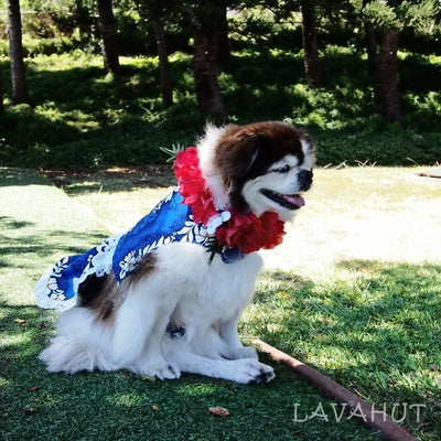 Electric Blue Hawaiian Dog Dress - Dog