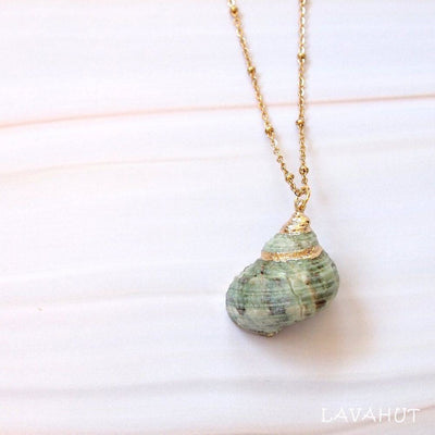 Green Turbo Seashell Pendant W/ Gold Necklace - Green - Necklaces