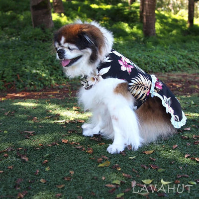Kopikala Black Hawaiian Dog Dress - Dog