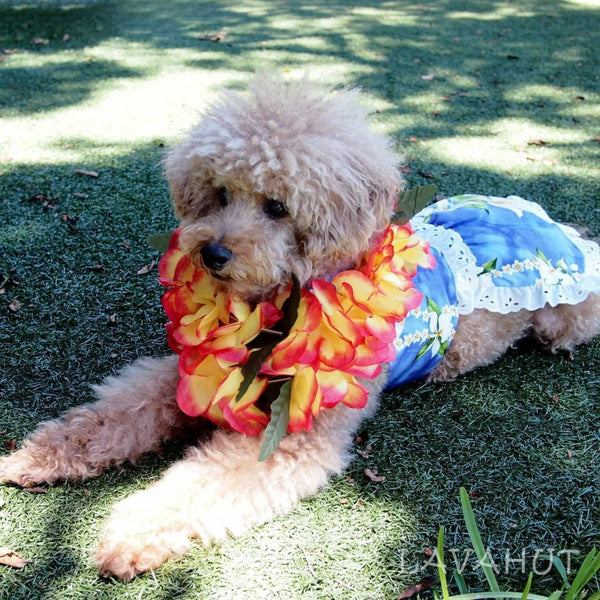 Orchid Purple Hawaiian Dog Dress - Dog