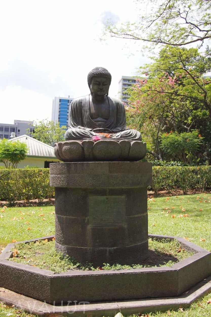 Tranquility in the Heart of Honolulu