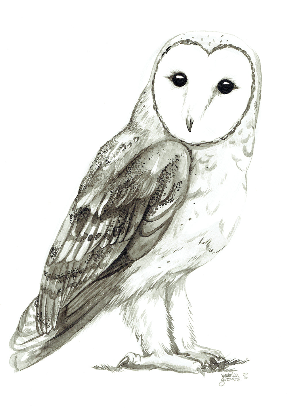 2016 Superb Owl— Barn Owl Original Ink Wash Painting