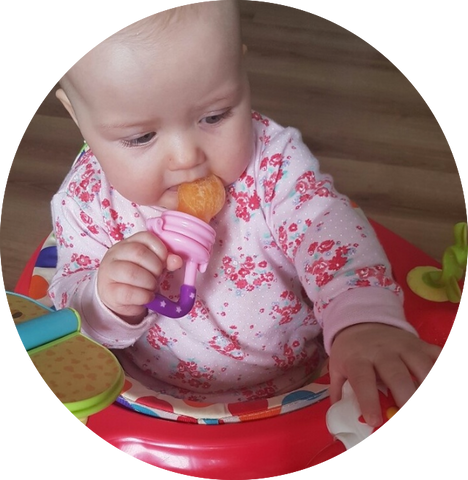 Baby Bite Pacifier And Food Supplement