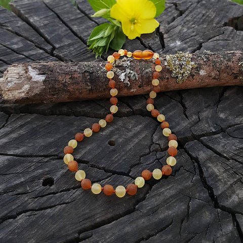 Amber teething necklaces Buddha Bead