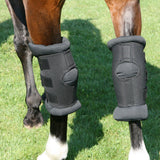 BOT Equine Hock Boots Padded Royal