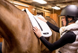 BOT Equine Saddle Pad Teddy SALE
