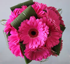 Bridesmaid/Brides Bouquet of Gerberas