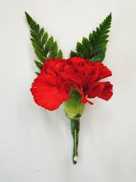 Carnation Buttonhole