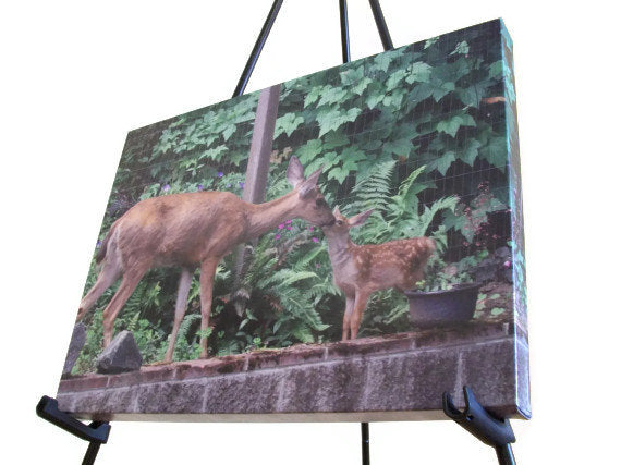 "Wall Art - Doe and Fawn - Art Print - 16"" x 20"""