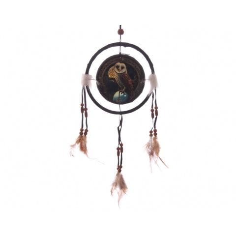 Barn Owl Dreamcatcher