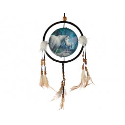 The Journey Home Dreamcatcher
