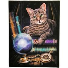 Fortune Telling Cat Canvas