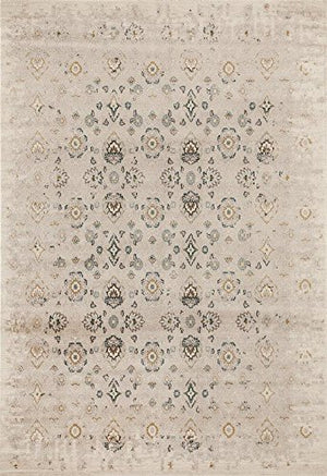 6507 Beige Distressed Traditional Area Rugs