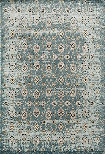6507 Blue Traditional Area Rugs