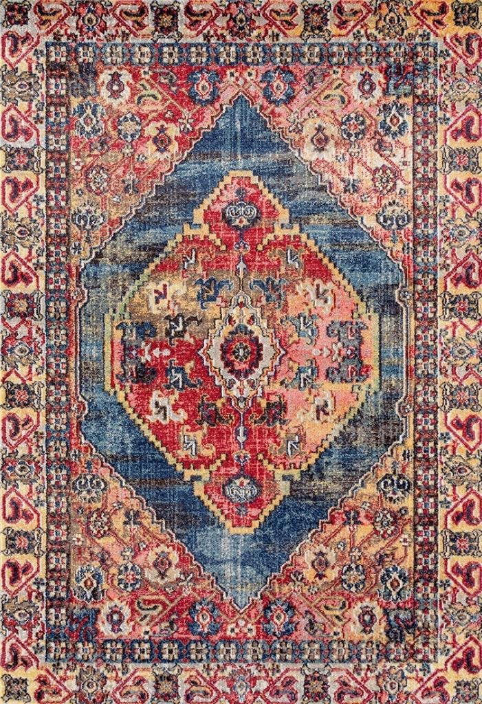 Royalty Colorful Distressed Persian Oriental Rug