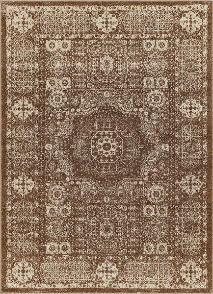 6120 Brown Medallion Vintage Distressed Area Rugs