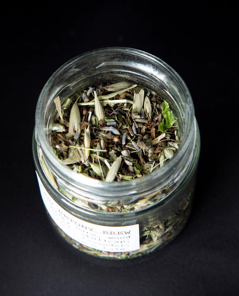 Wood Betony Brew Herbal Infusion - Blueberryjams