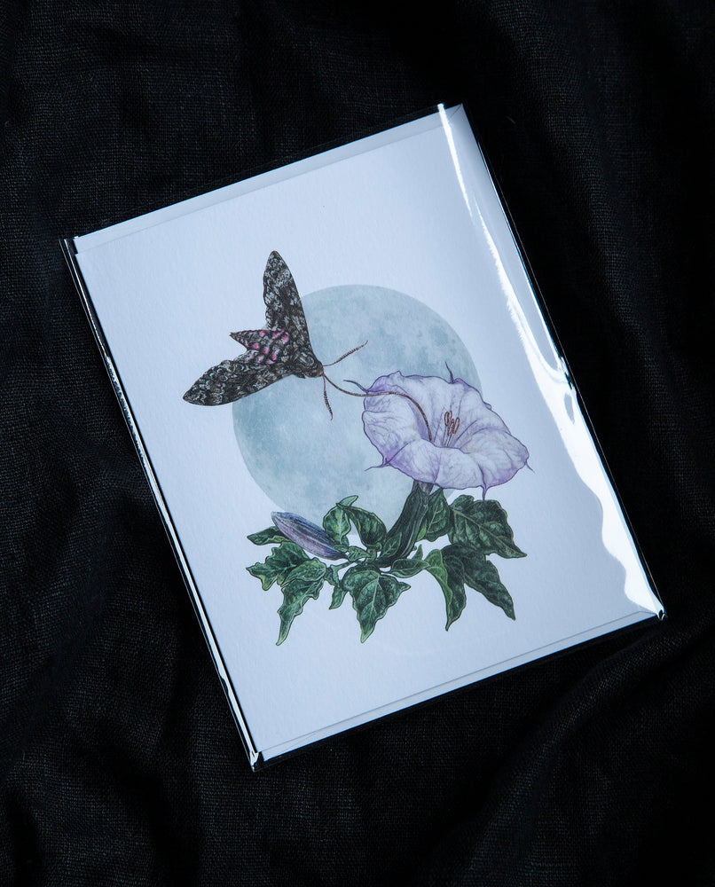 Datura & Moth Greeting Card - Open Sea Designs